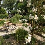 tuin vooraan